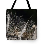 Dewy Seed Parachutes Tote Bag