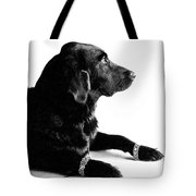 Diamonds Are A Dogs Best Friend Tote Bag