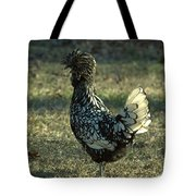 Dianne Ross Tote Bag