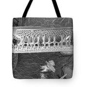 Diatom Tote Bag