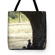 Did You Bring The Ladder? Tote Bag