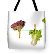 Dieting Concept Tote Bag