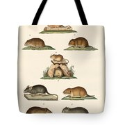 Different Kinds Of Mice Tote Bag