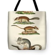 Different Kinds Of Sleepers Tote Bag