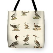 Different Kinds Of Waterbirds Tote Bag