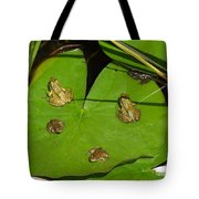 Different Stages Of Frog Growth Tote Bag