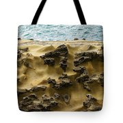 Differential Erosion Tote Bag