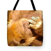 Digging For Gold Tote Bag