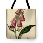 Digitalis  Tote Bag by Philip Ralley