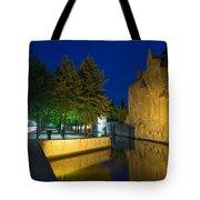 Dijver Canal At Night  Tote Bag