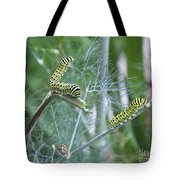 Dillweed And Caterpillars Tote Bag