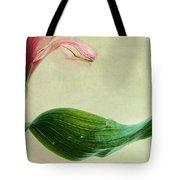 dim colours II Tote Bag