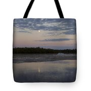 Ding Darling And Moon - 16x42 Tote Bag