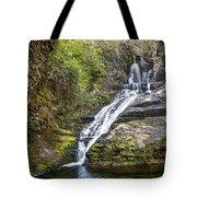 Dingmans Falls Tote Bag