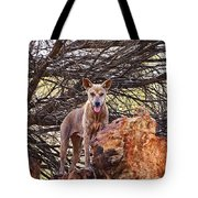 Dingo In The Wild V5 Tote Bag