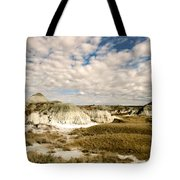 Dinosaur Badlands Tote Bag