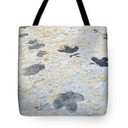 Dinosaur Tracks Tote Bag