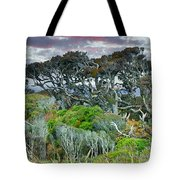 Dinosaur Trees Tote Bag