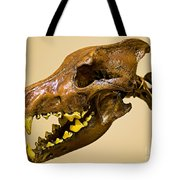 Dire Wolf Skull Fossil Tote Bag