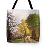 Dirt Road To Some Place Tote Bag