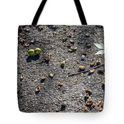 Dirty Dishes - Squirrel Style Tote Bag