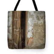 Dirty Door Tote Bag