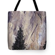 Disappearing Into The Wall - 2 Tote Bag