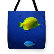 Discus Fish Tote Bag