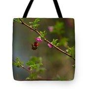 Distant Hummingbird Tote Bag