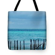 Distant Shore Tote Bag