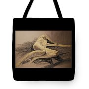 Distraught Tote Bag