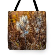 Ditch Beauty Tote Bag