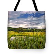 Ditch Dreaming Tote Bag