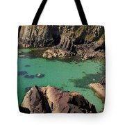 Dive Right In Tote Bag