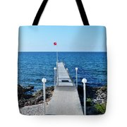 Divers Down Tote Bag