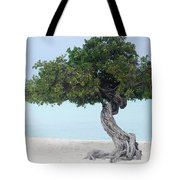 Divi Divi Tree In Aruba Tote Bag