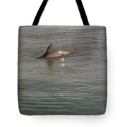 Diving Dolphin Tote Bag