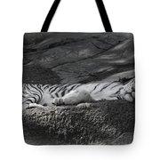 Do Not Disturb Tote Bag by Joan Carroll