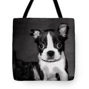 Do You Love Me Tote Bag by Jordan Blackstone
