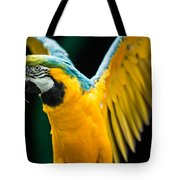 Do Your Exercise Daily Blue And Yellow Macaw Tote Bag