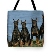 Doberman Pinschers Tote Bag