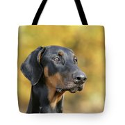 Dobermann Dog, In Autumn Tote Bag