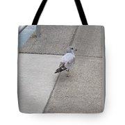 Dockside Stroll Tote Bag