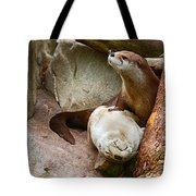 Doctor Otter At The Western North Carolina Nature Center Tote Bag