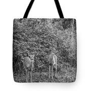 Doe A Deer Bw Tote Bag