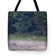 Doe And Fawn In The Early Morning Tote Bag