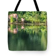Doe And Fawns At The Pond Tote Bag