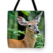 Doe Close Tote Bag