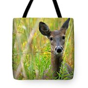 Doe In Morning Dew Tote Bag