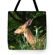 Doe In Tall Grass Tote Bag